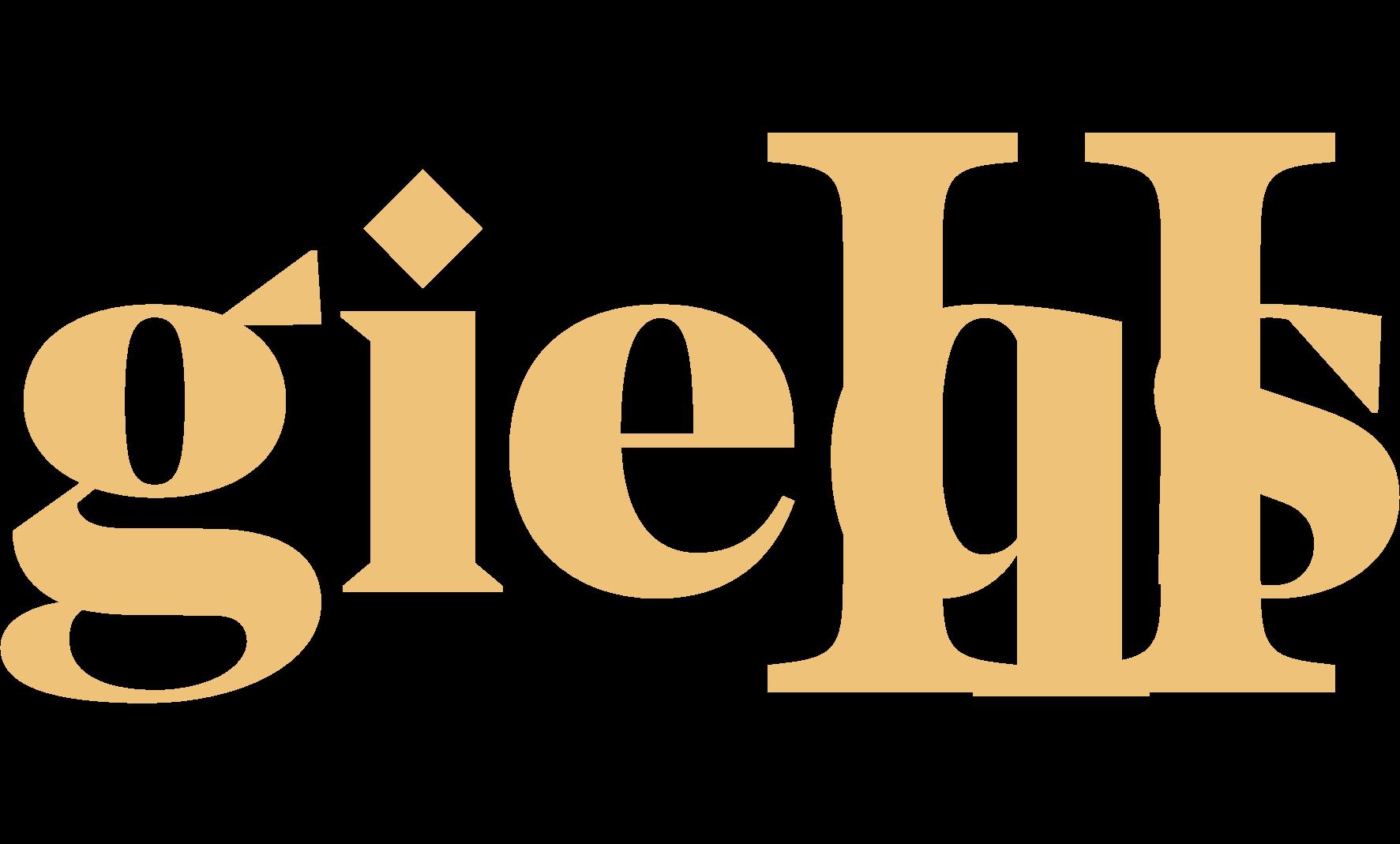 GIEQs II Banner